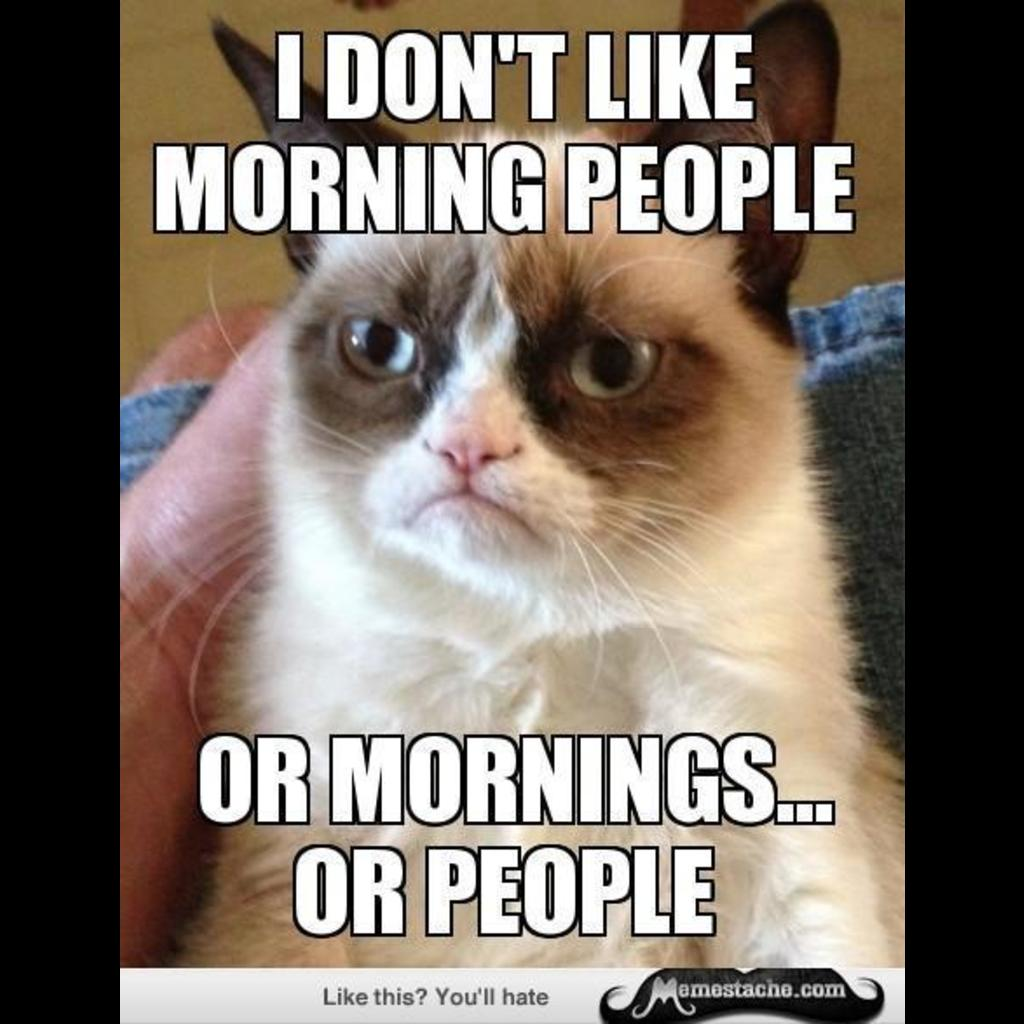 Grumpy cat bad day meme grumpy cat memes funny related keywords